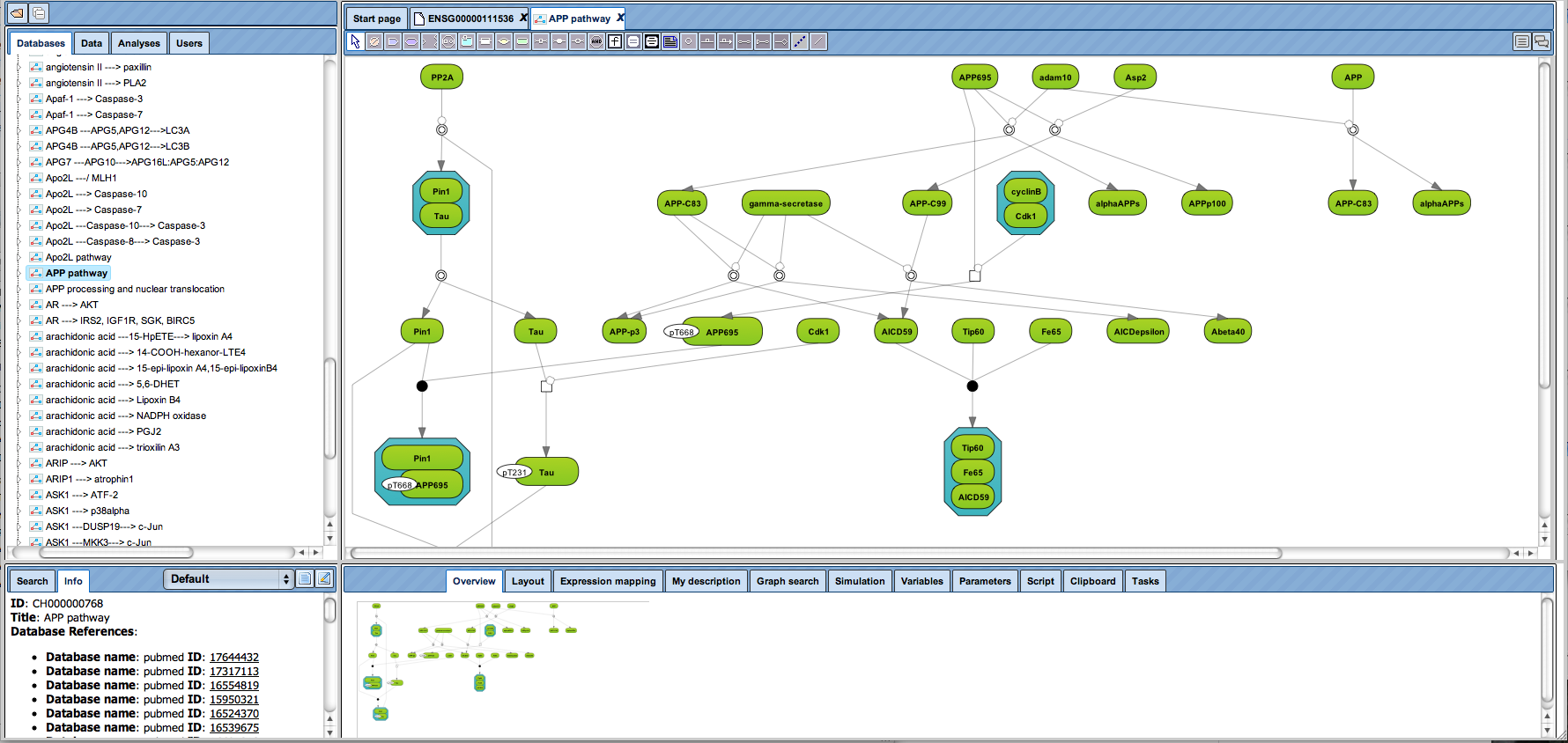 Pathway analysis and network visualization with the geneXplain platform using the TRANSPATH® database.
