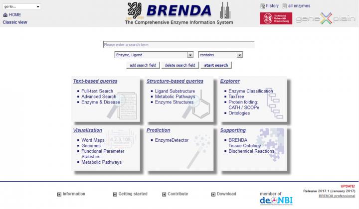 homepage_brenda_2017.1-720x420