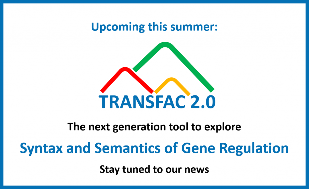 TRANSFAC 2.0